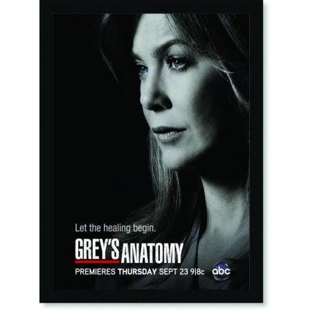 Quadro Poster Series Greys Anatomy 2