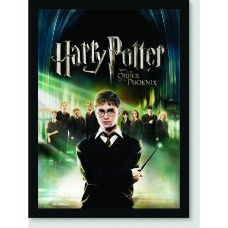 Quadro Poster Filme Harry Potter e a Ordem da Fenix 03