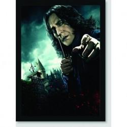 Quadro Poster Filme Harry Potter e as Reliquias da Morte 09