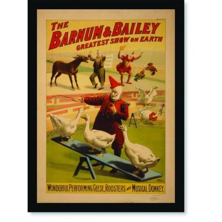 Quadro Poster Cinema The Barnum & Bailey