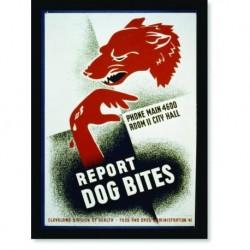 Quadro Poster Propaganda Report Dog Bites