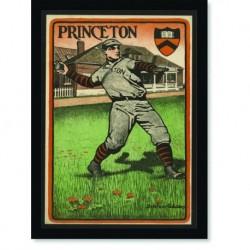 Quadro Poster Esportes Princeton