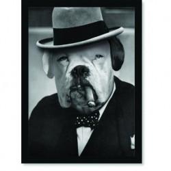 Quadro Poster Animais Cachorro Winston Churchill