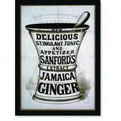 Quadro Poster Propaganda Bebidas Jamaica Ginger