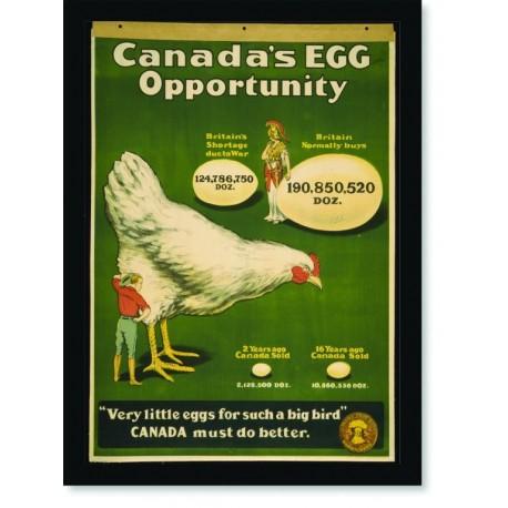 Quadro Poster Propaganda Bebidas Canadas Egg Opportunity