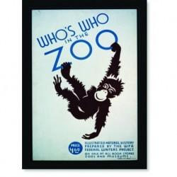 Quadro Poster Natureza Whos Who In The Zoo