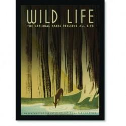 Quadro Poster Natureza Wild Life Preserve
