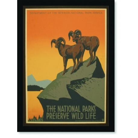 Quadro Poster Natureza The National Parks