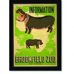 Quadro Poster Natureza Brookfield Zoo Information