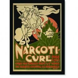 Quadro Poster Natureza Narcoticure